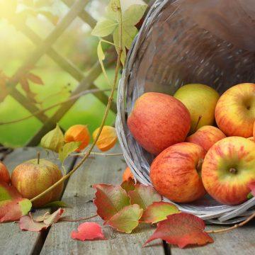 Cesta de manzanas encima de una mesa de madera