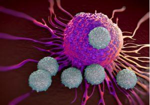 Leucocitos alrededor de una célula cancerígena